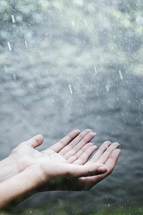 Hikmah Diturunkannya Hujan